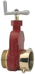 Hydrant Gate Valve brass 2.5 inch Female NST (NH) X 2.5 inch Male NPSH