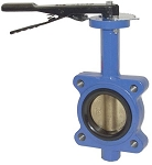 Ductile Iron Butterfly Valves threaded lug style 2 inch size with bronze disc and BUNA-N liner